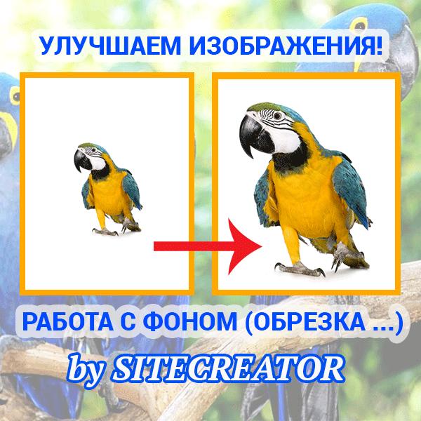 Улучшаем изображения! (обрезка лишнего исходного фона и т. д.)