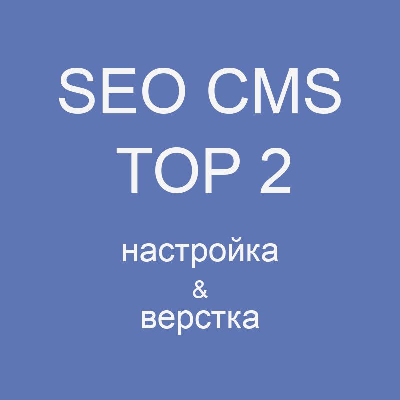 Настройка SEO CMS TOP 2
